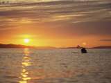 Kayaking at Sunset on Hudson Strait Photographic Print by John Dunn/Arctic Light
