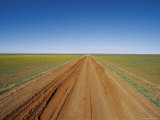 Track Damage Done by 4WD Vehicles Following Rain in the Outback Photographic Print by Jason Edwards