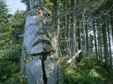 Two Old Totem Poles in the Forest Photographic Print by John Dunn/Arctic Light