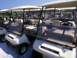 A Fleet of Carts Awaiting Avid Golfers Photographic Print by Darlyne A. Murawski
