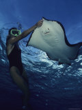 A Diver Having a Close Encounter with a Southern Stingray Photographic Print