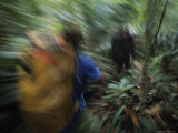 Porters Carrying Loads Through a Borneo Forest Photographic Print by Peter Carsten