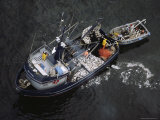 An Elevated View of a Fishing Boat with Fish on the Deck Photographic Print by Bill Curtsinger