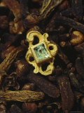 An Emerald Stud, on Top of Clove, an Important Spice in Galleon Trade, was Found in the Wreckage Photographic Print by Sisse Brimberg