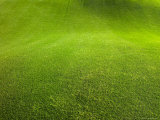 Regular Grass on a Golf Course Photographic Print by Raul Touzon