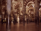 The Ancient Arches of the Mosque in the Mezquita in Cordoba, Spain, Cordoba, Spain Photographic Print by Taylor S. Kennedy