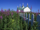 Russian Orthodox Church, Built in 1901, with Fireweed Flowers in Foreground Photographic Print by Rich Reid
