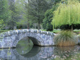 A Stone Bridge in Queenstown Gardens Photographic Print by Rich Reid