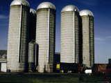 A Row of Five Grain-Storing Silos Photographic Print by Stephen St. John