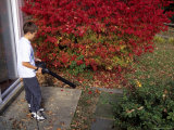 A Boy Uses a Leaf Blower to Clear Autumn Leaves from a Backyard Patio Photographic Print by Stephen St. John