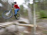 Mountain Biker Riding Stunts in Whitefish, Montana, USA Fotoprint van Chuck Haney