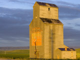 Old Granary at Sipple, Montana, USA Photographic Print by Chuck Haney