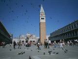 Saint Mark's Square and the Famous Pigeons, in Venice, Italy Photographic Print by Taylor S. Kennedy
