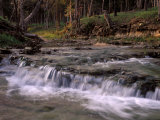 Creek and Ozarks, Montana, USA Photographic Print by Gayle Harper
