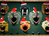 Animals Wear Hats in the Shooting Galley at Christmas Time, Tivoli Photographic Print