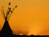 Tipis at Sunset, Browning, Montana, USA Stampa fotografica di Chuck Haney