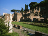 The Ruins of the Garden of the Vestal Virgins in the Roman Forum Photographic Print by Taylor S. Kennedy
