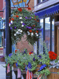 Flags and Flowers, Philipsburg, Montana, USA Stampa fotografica di Chuck Haney