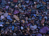 Gravel in Mountain Creek, Montana, USA Photographic Print by Jerry Ginsberg