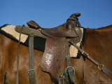 A Close View of a Saddle on a Horse Photographic Print by Taylor S. Kennedy
