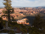 A View into the Hoodoos and Rock Formations of the Park at Sunrise, Bryce Canyon, Utah Photographic Print by Taylor S. Kennedy