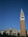 View of Venice's St. Mark's Square with Its Famed Pigeons Overhead Photographic Print by Taylor S. Kennedy