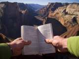 A Man Reads a Book with a Beautiful View Down the Valley, Zion National Park, Utah Photographic Print by Taylor S. Kennedy