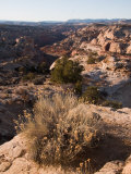 A View into on of the Canyons in the Grand Staircase National Monument, Utah Photographic Print by Taylor S. Kennedy