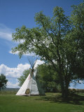 A Teepee Stands Under a Tree on a Sunny Day Photographic Print by Taylor S. Kennedy