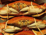 Dungeness Crab at Pike Place Public Market, Seattle, Washington State, USA Fotografisk tryk af David Barnes