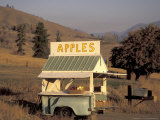 Honor-System Apple Stand in the Methow Valley, Washington, USA Photographic Print by John & Lisa Merrill