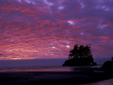 Sunset at Tounge Point, Olympic National Park, Washington, USA Photographic Print