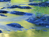 Summer Reflections in the Waters of the Lamprey River, New Hampshire, USA Photographic Print by Jerry & Marcy Monkman