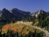 Paradise Road and Tatoosh Range, Mt. Rainier National Park, Washington, USA Photographic Print