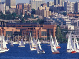 Sailboat Race on Lake Union, Seattle, Washington, USA Photographic Print by William Sutton