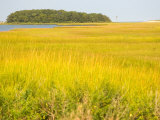Canoeing the Sloughs and Waterways of Long Island Sound, The Hamptons, New York, USA Photographic Print