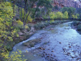 Virgin River and Couple on the Footbridge, Zion National Park, Utah, USA Photographic Print