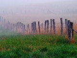 Fence Across Foggy Meadow, Cades Cove, Great Smoky Mountains National Park, Tennessee, USA Photographic Print by Adam Jones