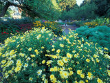 Prescott Park Garden, New Hampshire, USA Photographic Print by Jerry & Marcy Monkman