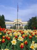 Spring Flowers and John Park Building, University of Utah, Salt Lake City, Utah, USA Photographic Print by Scott T. Smith