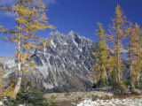 Mount Stuart with Golden Larch Trees, Mount Stuart Range, Washington, USA Photographic Print