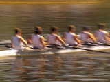 Crew Rowing, Seattle, Washington, USA Photographic Print by Terry Eggers