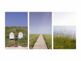 Beach Path Triptych Prints