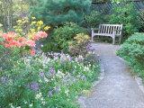 Parsons Gardens Park on Queen Anne Hill, Seattle, Washington, USA Fotografie-Druck