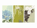 Eastern Floral Triptych Posters
