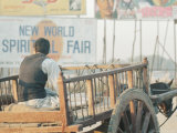 Man with Cart in Delhi Village, India Lmina fotogrfica