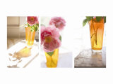 Rose in Amber Vase Triptych Photo