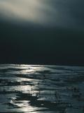 Moonlight Reflecting off Broken Ice Photographic Print
