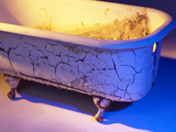 Chipped and Cracked Antique Clawfoot Bathtub Photographic Print