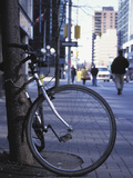 Bicycle Chained to a Tree on a Busy City Street Photographic Print